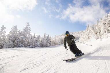 Whiteface