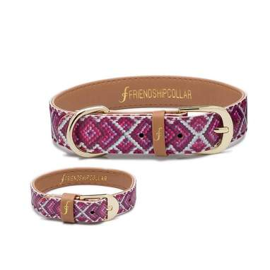 Princess Dog Collar With Friendship Bracelet