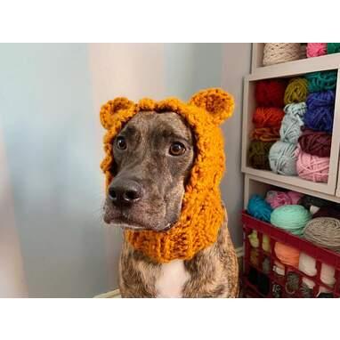 Dog Bear Cowl
