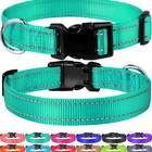 FunTags Reflective Nylon Dog Collar