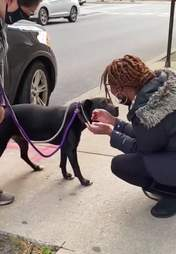 Dog is so excited to reunite with mom