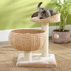 Tiered Cat Bed