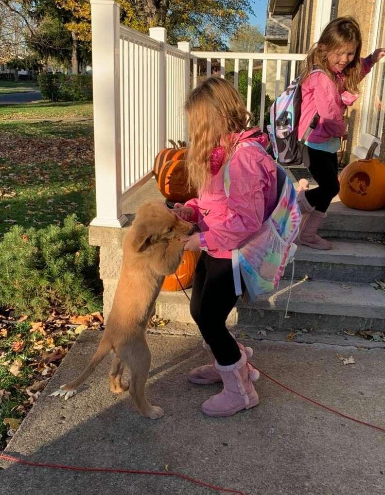 Dog makes sure kids get on school bus safely