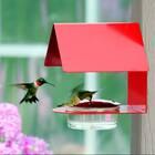 Dieguez Hummingbird Feeder