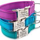 Dog Collar With Pet Name And Contact Info