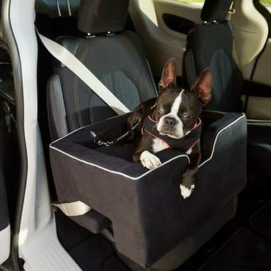 PET GEAR Large Car Booster, Black - Chewy.com