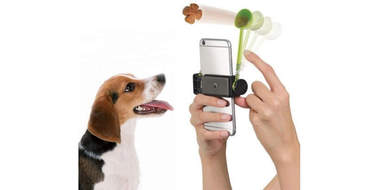 how to take a dog selfie