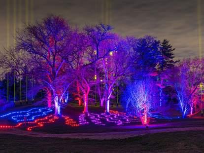 The Morton Arboretum trees