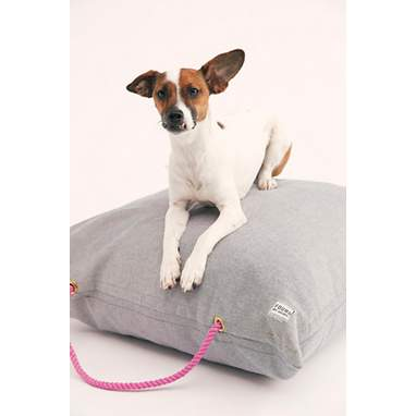 Free People X Found Denim Dog Bed