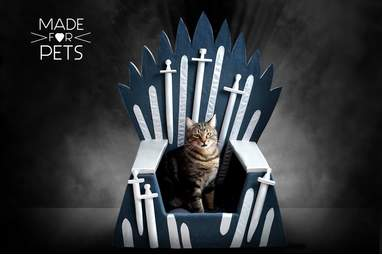 An iron throne built for a Queen (or King)