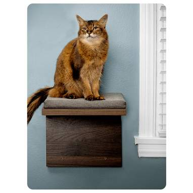 Cat Shelf 2-Pack