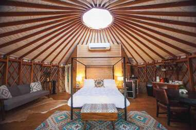 Yurt In The Trees