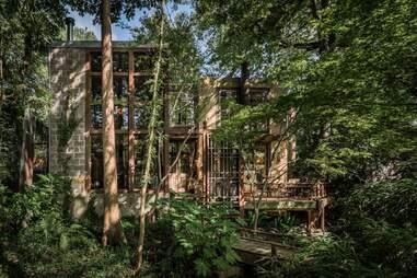 The Extraordinary Treehouse