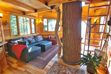 Treehouse in the Columbia River Gorge