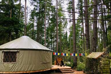 Forest Yurt Nature Retreat on Whidbey Island