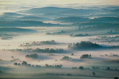 Fog-covered farmland