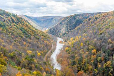 Grand Canyon of Pennsylvania