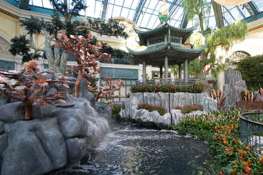 Bellagio's Conservatory & Botanical Garden