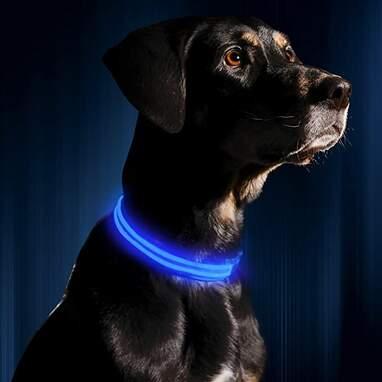 Illumiseen LED Collar