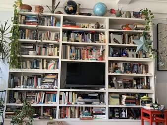 Find the cat hiding in this photo