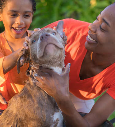 Essential Grooming Products For New Pet Parents
