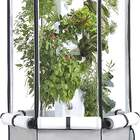 Aerospring Indoor Hydroponic System: Tower, Tent, LEDs, and Fan