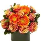 Rose & Gerbera Daisy Bouquet