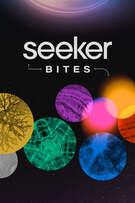 Seeker Bites cover art