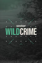 Wild Crime cover art