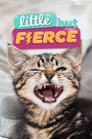 Little But Fierce cover art