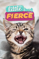 Little But Fierce cover art