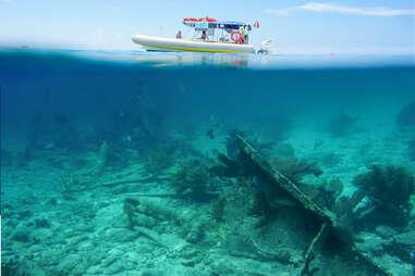 coral reefs at Biscayne National Park