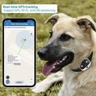 Bartun Pet Tracker