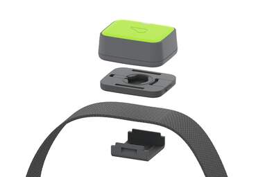 Whistle Go Explore GPS Pet Tracker And Collar
