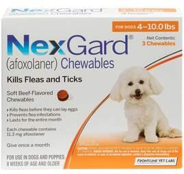 Nexgard flea and tick treatments for puppies