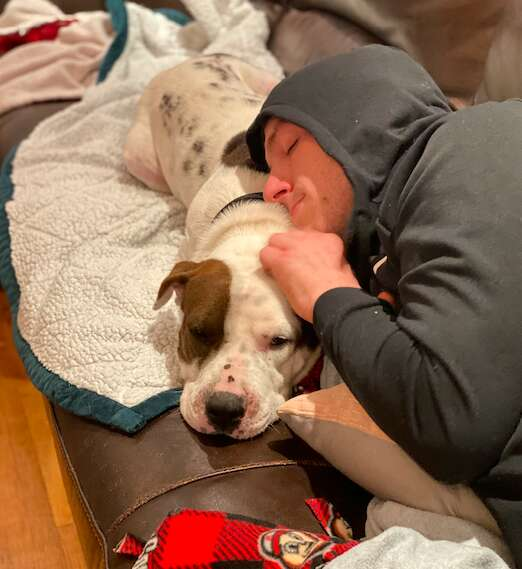 Boomer the rescue dog learns to trust