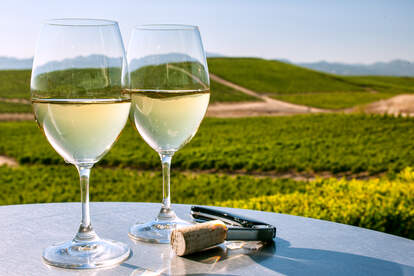 Northern California wine country with white wine glasses