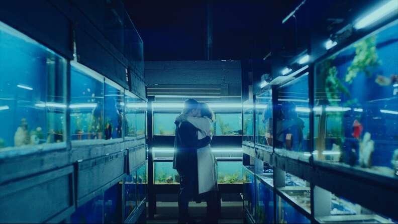 little fish movie, fish tanks kiss