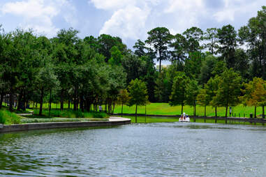 Swan paddle boat on the Woodlands Waterway.