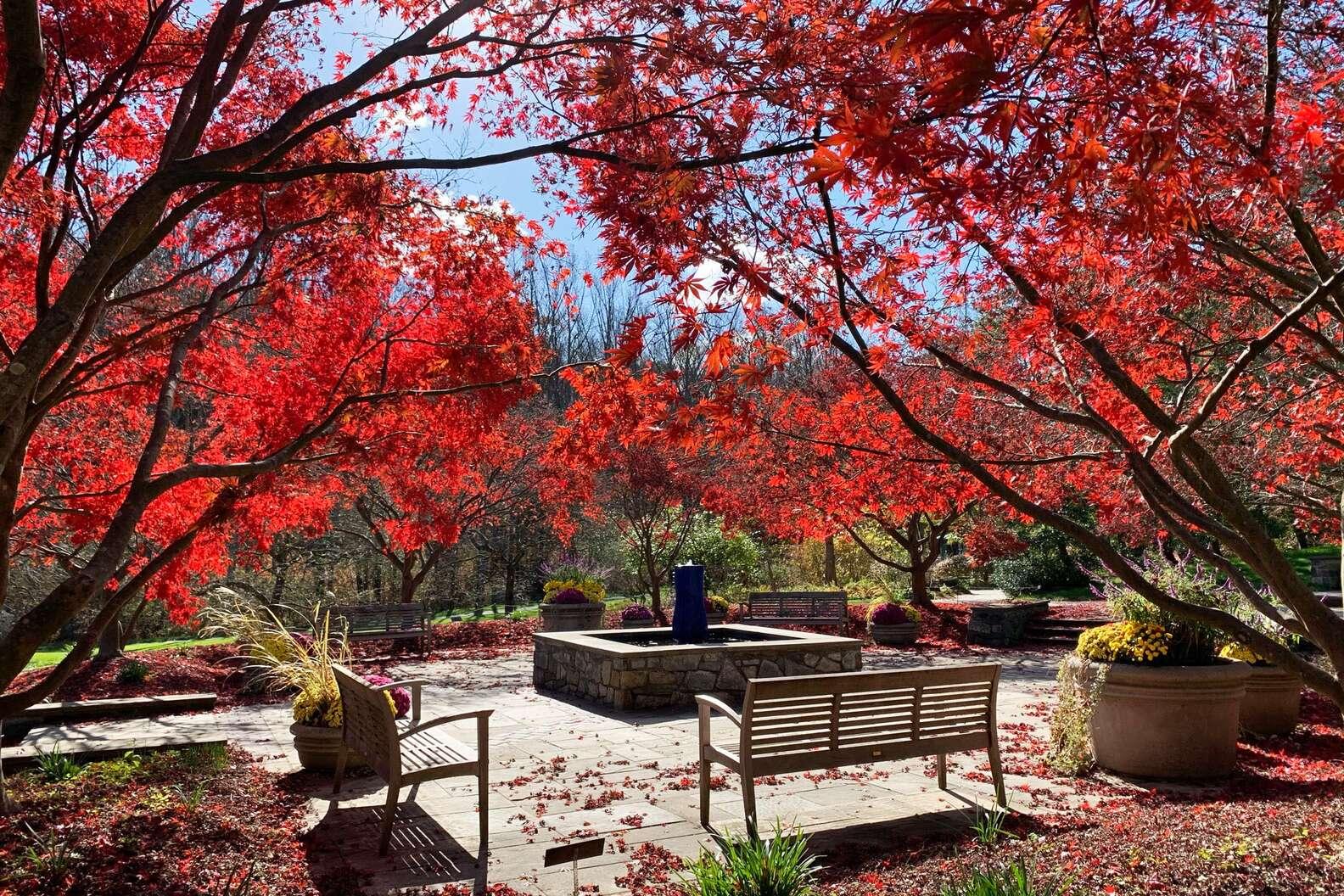 Brookside Gardens, Montgomery Parks