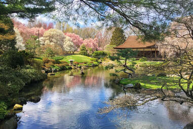 shofuso japanese tea house in philly