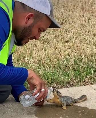 Landscaper gives squirrel a drink of water