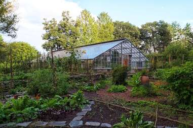 Bartlett Arboretum and Gardens