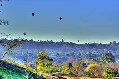 hot air balloons over olivenhain