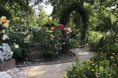 airbnb Butterfly Farm