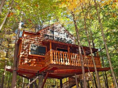 Two-Story Luxury Treehouse