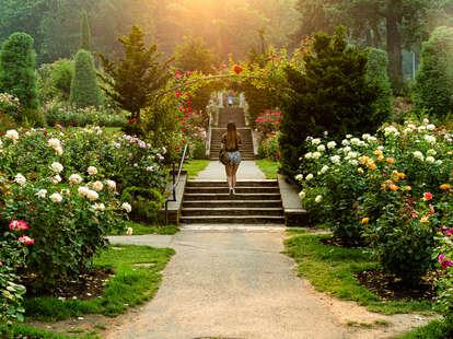 A botanical garden