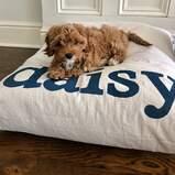 Furlap Cotton Canvas Pet Bed and Duvet