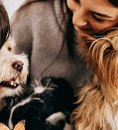 Customizable Products To Gift Pet Parents