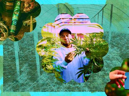 Eco-friendly cannabis brands